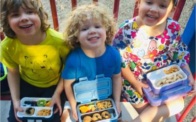 Why Kids Love Kinsho Bento Boxes